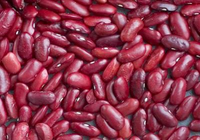 bruna bönor näringsinnehåll