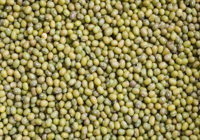 bönor protein eller kolhydrater